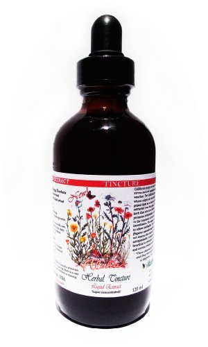 Gynostemma (Gynostemma Pentaphyllum) Liquid Extract Tincture 4 Oz (120Ml)