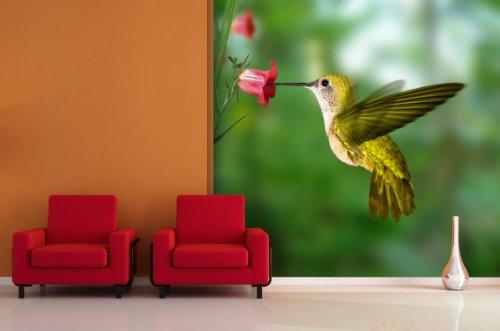fototapete yellow kolibri in verschiedenen gr en als papiertapete oder vliestapete w hlbar. Black Bedroom Furniture Sets. Home Design Ideas