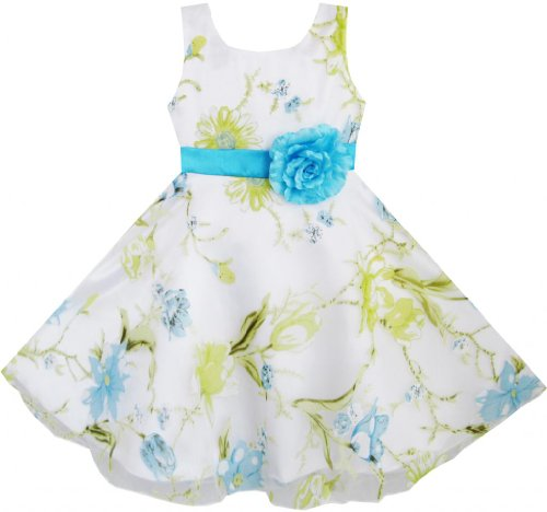 Dh25 Sunny Fashion Big Girls' 3 Layers Dress Blue Flower Green Leaves Tulle 11-12
