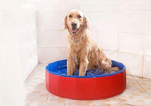 Newstyle Dog Bathing Tub Foldable Small Pet Dog Cat Swimming Pool Bathtub Washer 32inch D X