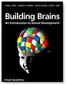Building Brains: An Introduction to Neural Development