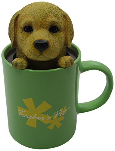 Idea Max Peek-A-Pet Bobble Heads Teachers Pet Labrador Retriever (Mug) - 1