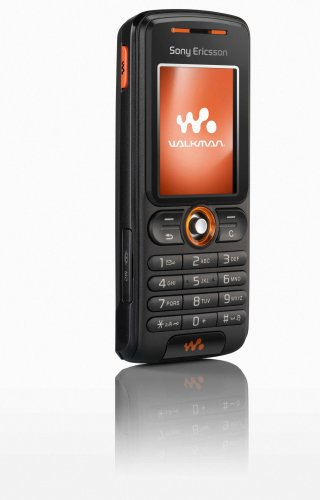 Sony Ericsson W200a Unlocked Cell Phone with MP3/Video Player, Memory Stick Micro Slot--U.S. Version with Warranty (Rhythm Black)