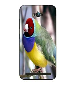 Make My Print Bird Printed Colorful Hard Back Cover For Asus Zephone Max
