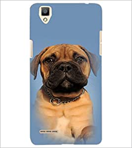 PrintDhaba Cute Dog D-4913 Back Case Cover for OPPO F1 (Multi-Coloured)