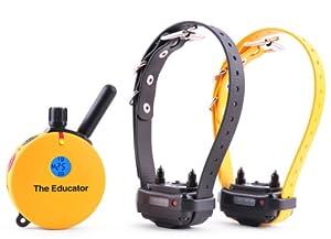 The Educator ET-402TS 2 Dog E-Collar Remote Dog Trainer