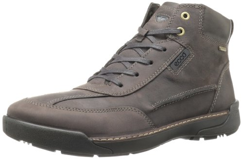 ECCO Men's Dason GTX Boot,Coffee/Clay,40 EU/6-6.5 M US