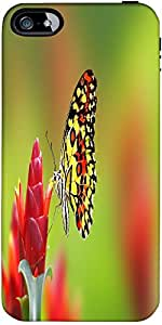Snoogg Butterfly On Flowers Designer Case Cover For Apple Iphone 5 / 5S