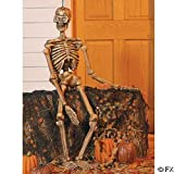 CREEPY 3 FOOT HALLOWEEN SKELETON PROP FOR HAUNTED HOUSES - LIFE-LIKE FULL 3D