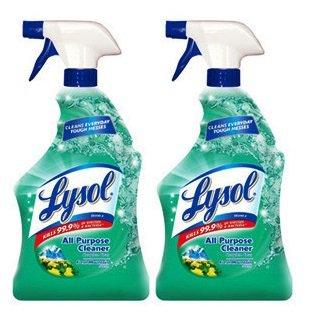lysol-confezione-da-2-prodotto-per-la-pulizia-fragranza-fresca-di-montagna-32-g-ogni