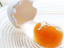 食品サンプル キーホルダー 生卵 面白さに誰もがトリコ! この瞬間が食品サンプルに! おもしろ雑貨
