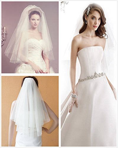 Passat 2 T Net Cut Soft Tulle Short Vintage Wedding Bridal Veils With Comb H77 (2Tie, Ivory)