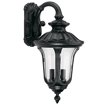 Yosemite Home Decor FL5318DBL Tori Collection 11-Inch Fluorescent Exterior Sconce Black Frame with Frosted Glass