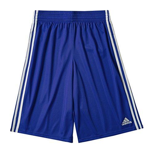 adidas, Pantaloni corti Uomo Commander, Blu (Collegiate Royal/White), M
