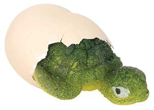 Toysmith Hatchin' Grow Turtle, Assorted Styles
