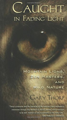 Caught in Fading Light: Mountain Lions, Zen Masters, and Wild Nature
