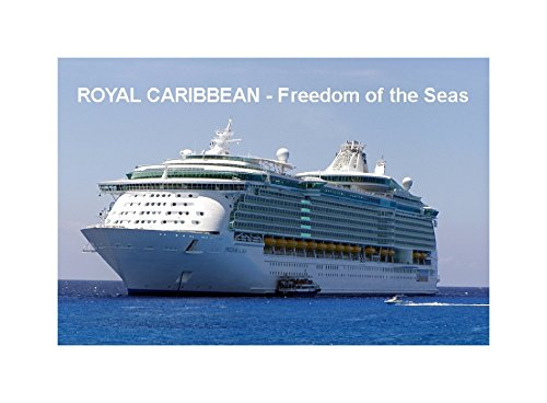 calamita-da-frigo-cruise-ship-fridge-magnet-freedom-of-the-seas-royal-caribbean-9cm-x-6cm-jumbo