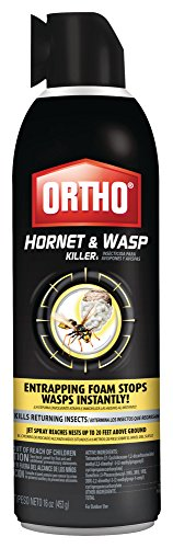 Ortho Hornet and Wasp Killer, 16 oz
