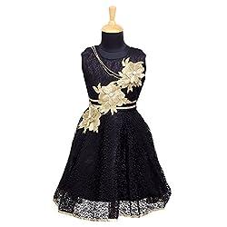 Aarika Girl's Premium Flower Net Fabric Party Wear Frock