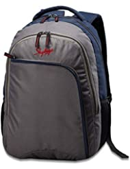 Skybags Grey Casual Backpack (Bb Beat 01 grey)