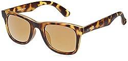 Scavin  Wayfarer Sunglasses (Brown) (215S908DEMI|50)