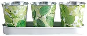Esschert Design USA ED05 Elm Print Flowerpots with Tray, Set of 3