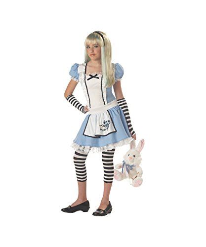 Storybook Disney Alice in Wonderland Tween Girls Halloween Costume