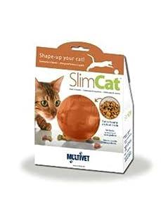 Radio Systems RS-TOY00003 PetSafe Slimcat, Orange