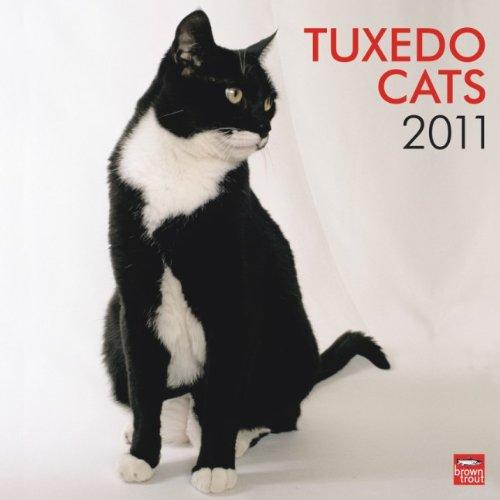 Tuxedo Cats 2011 Wall Calendar 12