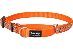 Red Dingo Designer Martingale Dog Collar, Medium, Snake Eyes Orange
