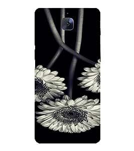 PrintVisa Flower Design 3D Hard Polycarbonate Designer Back Case Cover for One Plus 3