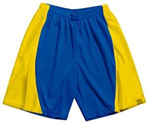 Buy A4 Adult Mesh Dazzle 9 Inseam Basketball Shorts ROYAL GOLD AXL by A4
