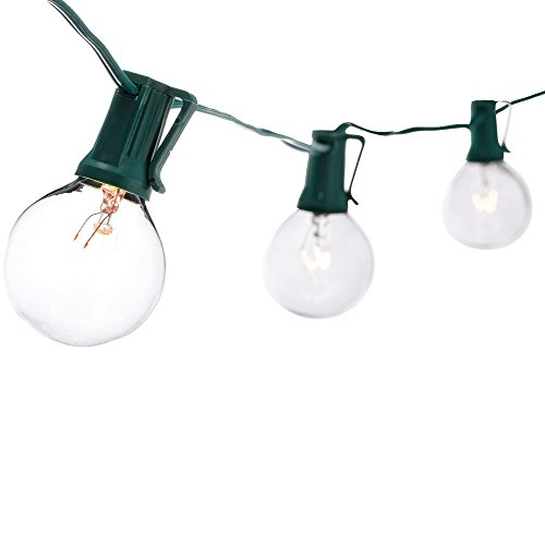 Divine 25 Clear G40 Bulbs UL Listed Globe String Lights, 25-Feet, Green (Rope Lights 75 Feet compare prices)