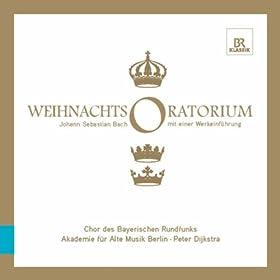 Christmas Oratorio, BWV 248: Part III: Recitative: Er hat sein Volk getrost ? (Bass)