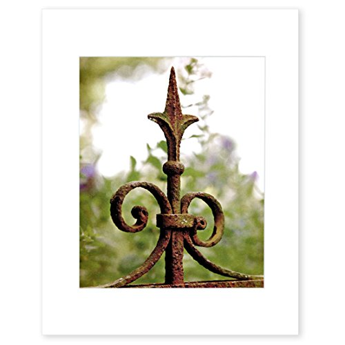 Wall Art Home Hardware : Matted photographic print english garden rustic