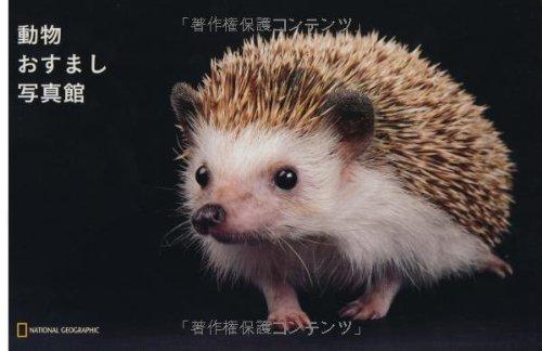 ナショジオ ワンダーフォトブック 動物おすまし写真館 (ナショジオワンダーフォトブック)