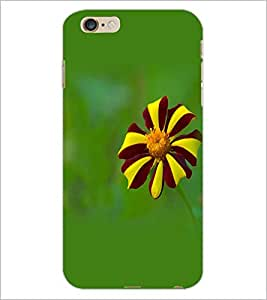PrintDhaba Flower D-1962 Back Case Cover for APPLE IPHONE 6S (Multi-Coloured)