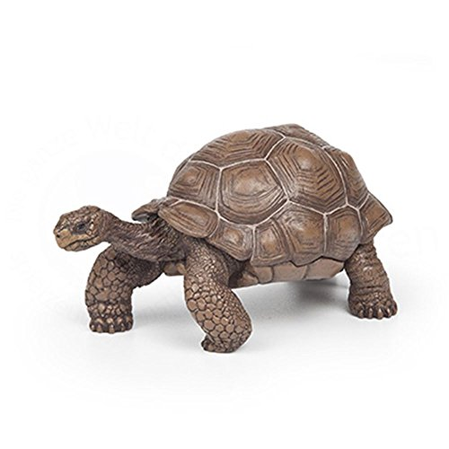 Papo Galapagos Tortoise Figurine - Wild Animal Fantasy Action Figure Detailed