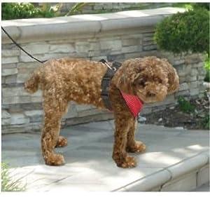 Doggieduds Mesh Dog Harness Small Red