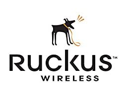 Ruckus Wireless SLED ENDUSER SUPPORT-1 LIC UPG RADE -1 YR - 841-1201-1L00