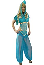 Yummy Bee Arabian Princess Costume Cosplay Size 2-12 Blue Belly Dancer Genie