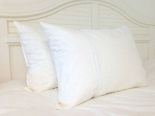 Pillow protector set of 2 king size 20wx36l allergy for Dust mite allergy pillow cover