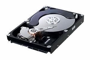 Samsung 1 TB 7200 RPM 32MB Cache SATA 3.0Gb/s F1 RAID Class 3.5-Inch Hard Drive Bulk/OEM HE103UJ