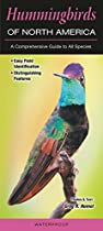 Hummingbirds of North America: A Comprehensive Guide to All Species