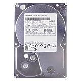 Hitachi Ultrastar A7K2000 1TB Terabyte SATA/300 7200RPM 32MB 3.5