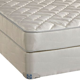 Sealy Twin Mattress