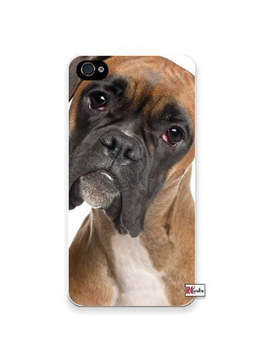 Premium Direct Print Adorable Sad Boxer Dog iphone 6 Quality Hard Snap On Case for iphone 6/Apple iphone 6 - AT&T Sprint Verizon - White Case PLUS Bonus RCGRafix The Best Iphone Business Productivity Apps Review Guide