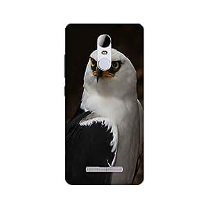 Neyo Designer mobile back cover for Xiaomi Redmi Note 3