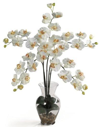 Nearly Natural 1106-CR Phalaenopsis Liquid Illusion Silk Flower Arrangement, Cream
