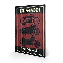 Harley Davidson - Motorcycles Cuadro De Madera (60 x 40cm)